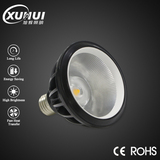 COB LED PAR Lamp