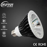 AC85-265V LED PAR Light